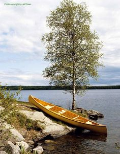 Canoeing, a part of camping that I love most and of course Kayaking Canoe Trip, Canoe And Kayak, Whitewater Kayaking, Canoeing, Best Family Tent, Wood Canoe, Utility Boat, Lake Arrowhead, Lake View
