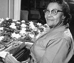 Lucille Bishop Smith with 330 fruitcakes, one for each Tarrant County soldier in Vietnam Tarrant County, 50 Years Ago, Fort Worth, Vietnam, Texas, Women, Texas Travel, Woman