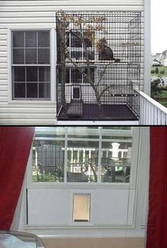 """Using a set of large dog kennels to make a """"catio"""" - Maddie would never want to stay in the house"""