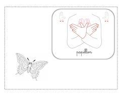 papillon LSF illustration
