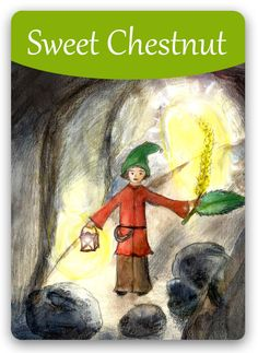 """Bach Flower: Sweet Chestnut - """"Have faith"""" Bach Flowers, Online Cards, Sweet Chestnut, The Ancient One, Flowers Online, Oracle Cards, Flower Cards, Flower Power, Essential Oils"""