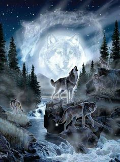 45 x 60 Super Soft Blanket Moon Wolf Blue Throw Plush Faux Fur Fleece Wolves Beautiful Wolves, Animals Beautiful, Cute Animals, Wolf Photos, Wolf Pictures, Anime Wolf, Wolf Tattoos, Wolf Artwork, Wolf Painting