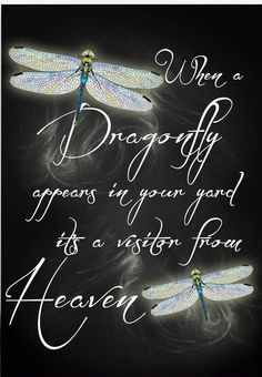 Dragonfly Quotes, Dragonfly Art, Dragonfly Necklace, Dragonfly Images, Butterfly Quotes, Dragonfly Tattoo, Great Quotes, Inspirational Quotes, After Life