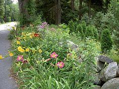 Midwest Gardening — Specialty Garden Types- The Hellstrip Garden Types, Drought Tolerant Plants, Cool Plants, Organic Gardening, Garden Ideas, Salt, Palette, Gardens, Street