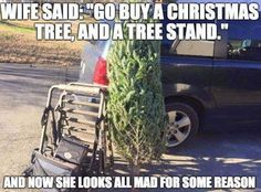 wife said go buy a Christmas tree,and a tree stand,and now she looks all mad for some reason,hunting tree stand,humor,why you mad,meme