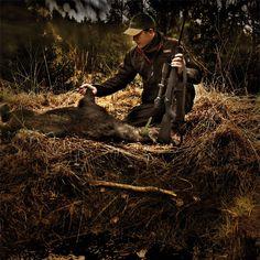 kostengünstig Website für Rabatt diversifiziert in der Verpackung Jagd mit Sauer 101