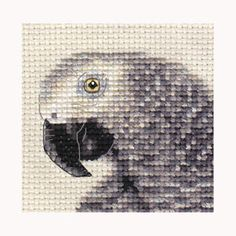 AFRICAN-GREY-PARROT-Bird-Full-counted-cross-stitch-kit-all-materials