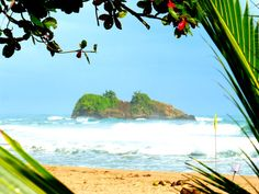 A Puerto Viejo to Manzanillo bike ride is the best way to see the Caribbean Coast of Costa Rica. Experience the Pura Vida life for yourself.
