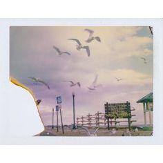 Cameras+Films Fuji Instax, Lomography, Big Shot, Cameras, Films, Painting, Art, Movies, Art Background