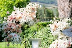 Wedding at Grande Provence - Franschhoek - ZaraZoo Wedding Photography Party Venues, Wedding Venues, How To Memorize Things, Things To Come, Old Oak Tree, Groom Getting Ready, Ceremony Decorations, Outdoor Ceremony, Couple Shoot