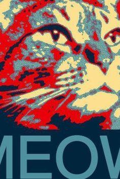 A Cat Named Limberbutt McCubbins Is Running For President! He's A Demo-Cat.