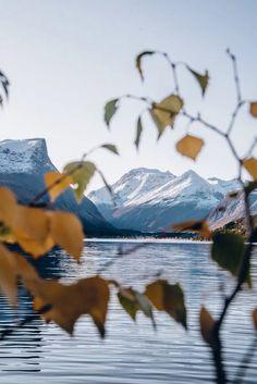 Länsi-Norjan road trip ja minkälaista on Norjassa lokakuussa – Viimeistä murua myöten Stavanger, Oslo, Road Trip, Traveling, Tie, Viajes, Ties, Travel, Tourism