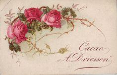 Vintage rose printable