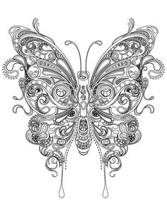 Butterfly Coloring Very Difficult To Print