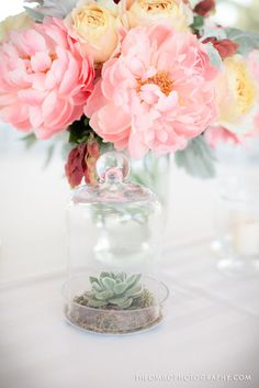 Current fav combination- corals, dusty caramel,and muted rust...and anything displayed under glass cloche. with Theo Milo Photography.