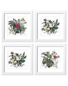 Sian - Zeng - Print - Tropical - Floral - Set of four - Artwork - Interior - Drawing