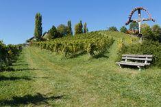 Ein wunderschönes Fleckerl Erde ist diese Südsteiermark! Da muss man sich einfach Zeit nehmen und genießen. Das südsteirische Weinland entdecken. Die berühmten steilen und sonnigen Hanglagen sind eine einzigartige Landschaft. Die Buschenschanken bieten einen traumhaften Ausblick auf ihren Terrassen und laden zum Genießen der herrlichen Weine ein. #Herbst #Südsteiermark #südsteirischeweinstrasse #Wein #weinstrasse #Winzer