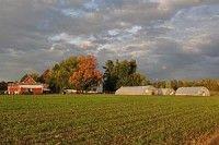 Szociális farmok jöhetnek létre Magyarországon