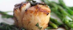 Вкус морских гребешков, как правильно приготовить морские гребешки