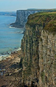Bempton Cliffs, Bridlington, East Yorkshire, one of the best areas to observe sea birds - photo by Thomas Tolkien Yorkshire England, East Yorkshire, Yorkshire Dales, Cool Places To Visit, Places To Travel, Places To Go, England And Scotland, English Countryside, British Isles