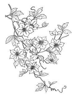 """Clear stamp (2.5"""" x 3.5"""") FLONZ clingy acrylic stamp // Flower Flonz http://www.amazon.com/dp/B00CWNFFVC/ref=cm_sw_r_pi_dp_Dupswb0A7WKWG"""