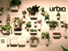 A Growing Trend: Vertical Gardens For Your Home : TreeHugger