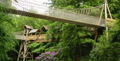 The Treehouse in Alnwick Gardens