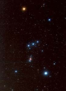 "Constellation ORION.  Below the belt, within the sword - is the Orion Nebula.  I viewed it on a 16"" telescope - breath-taking!"
