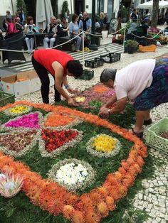 MONTAGEM DOS TAPETES DE FLORES NA PLACA CENTRAL DA AVENIDA ARRIAGA #flowerfestival #madeiraisland #beautifuldestination