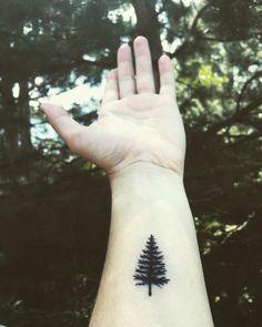 New Evergreen Tree Tattoo Small Tatoo Ideas Small Black Tattoos, Tiny Tattoos For Girls, Small Tats, Tattoos For Daughters, Tattoos For Guys, Tattoos For Women, Tattoo Small, Evergreen Tree Tattoo, Pine Tree Tattoo