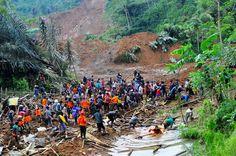 Indonesia searches for landslide survivors