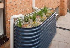 A half water tank makes the perfect rain garden.