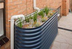 A half water tank makes the perfect rain garden.