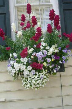 Çiçekleri suladım, çayı demledim, iki tane de karanfil attım içine. Birazcık da kabuk tarçın. Kitapları koydum önüme, fonda müzik. Kağıt kalem masa'da, pencere'den dökülen çiçekler nasıl'da masum ve sessizler.... Ve sustum. Kendini al'da gel Ey hayat sana hazırım bak!. . . Yağmur