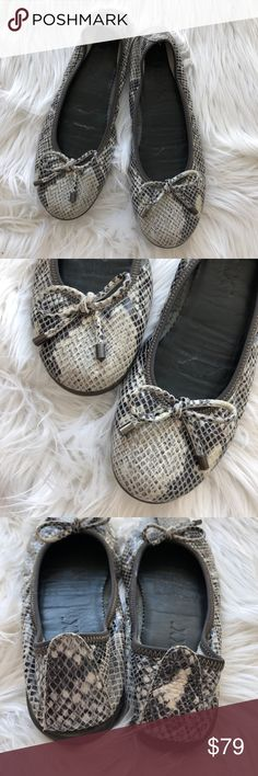 The flexx miss Italia leather ballet flat size 8 The flexx miss italia ballet flat in a gray snakeskin print.  Leather upper and lining, rubber sole.  Bow detail in stylish ballet flat.  Very comfortable. • Posh Ambassador • Smoke and pet free home • Fast shipping! THE FLEXX Shoes Flats & Loafers