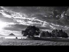 Enya - The Memory Of Trees (Original Version) HD