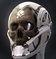 Inspiration from the mouth parts for robotic skull
