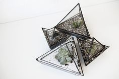 Our House: Miniature Greenhouse | green house, sarma miniature green house, hackney, netil market, greenhouse, terrariums | Glasshouse Journal