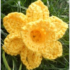 Daffodil Pattern PDF for Marie Curie Cancer Care