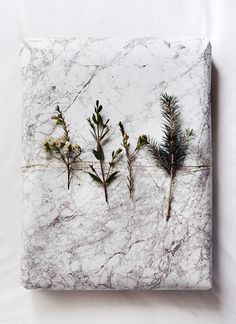 // Sub craft paper, thin gold wire and plant clippings.