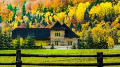 Autumn in Bucovina