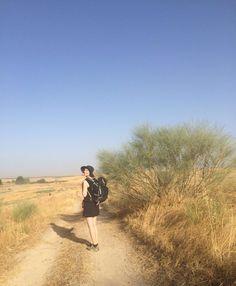 De Via de la Plata is geel en heet, dat is de conclusie van week één. Tot Zafra gekomen, 152 kilometer van Sevilla. Nog maar 855 te gaan! In Zafra heb ik een dagje vakantie van de camino. Dat…