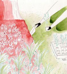 Sam's Garden - Pen and Watercolor