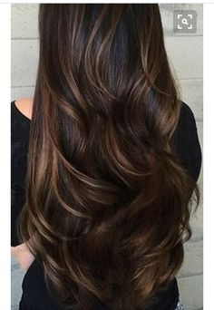 highlights and base color