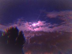 Pink night sky.