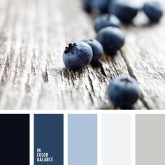 Color Palette Blueberry shades of blue are well-suited for bathroom decoration. This dark blue will look good on a light gray background, and for accents use lighter sha. Palette Design, Palette Deco, Pastel Palette, Blue Colour Palette, Colour Schemes, Color Combos, Room Colors, House Colors, Colours