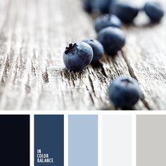 azul claro, azul turquí, celeste claro, color arándano, color azul arándano, color azul tejano, combinación de colores, combinación de colores para invierno, elección del color, gris, gris claro, gris claro y azul claro, gris oscuro, gris y azul oscuro, matices del azul oscuro, paleta de colores para