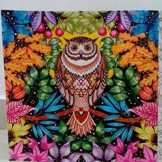 Johanna Basford | Colouring Gallery