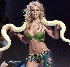 Google Image Result for http://dreamstudies.org/wp-content/uploads/2007/09/britney_spears_dreams_snake.jpg