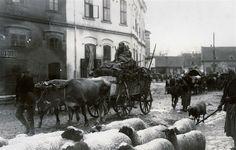 Pozarevac, Serbia WWI